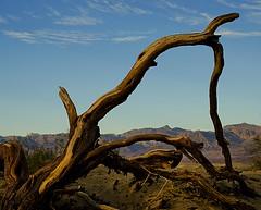 DEATH VALLEY EVENING (tombabich24) Tags: landscape deathvalley nationalparks