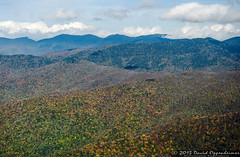 Mount Mitchell State Park in Autumn Colors (Performance Impressions LLC) Tags: travel autumn trees vacation usa mountains fall tourism nature leaves nc asheville fallcolors unitedstatesofamerica northcarolina visit aerial autumnleaves autumncolors foliage explore watershed aerialphoto blueridgemountains aerialphotography blueridgeparkway burnsville mountmitchell wnc watersupply westernnorthcarolina aerialphotographer mountmitchellstatepark yancycounty