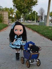 Serendipity taking Figaro for a Walk