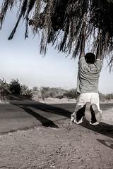 (Yesmk Photography) Tags: road playing tree men indian hanging banyan childish muthukumar yesmkphotography