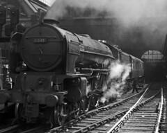 A1 60119 at Kings Cross, 20 May 1961 (Ian D Nolan) Tags: film station er br railway kingscrossstation lner 60119 patrickstirling kodakfolding620c epsonperfectionv750scanner a1lner