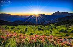 ( : LIU Photography ) Tags: mountain canon landscape star taiwan     hehuan    hehuanshan  1635l   1dx