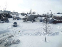 Feb8,2014g 027 After the second day of snow (terrygray) Tags: winterscene