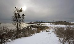 Bleak winter coastline (Bob Gundersen) Tags: ocean statepark park winter sea usa sun white snow tree ice beach water rock stone landscape coast photo interesting nikon flickr day waterfront image cloudy shots hiking snowy connecticut sandy horizon country shoreline tracks picture newengland ct places scene trail madison shore scenes hammonassett gundersen longislandsound conn nikoncamera d600 lisound hammonasset meigspoint hammonassetbeachstatepark hammonassetbeach nikond600 connecticutscenes bobgundersen robertgundersen pwwinter vision:mountain=0718 vision:outdoor=0824 vision:street=0524 vision:sky=085 vision:ocean=0542