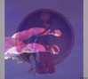 "Vision or ""The vertical Drummer"" (░S░i░l░a░n░d░i░) Tags: life pink blue red music love vertical death grey purple transformation heart drum spirit birth vision mind soul drummer acrobat february archetype 2014 inputoutput σ acrobatikoflife birthlifedeathbirtho renateeichert resilu"
