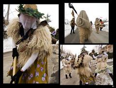 Carnevali_RdS_081 (Francesco Cattoni) Tags: sardegna folk piemonte val carnevale oristano sartiglia ottana roccagrimalda sampeyre varaita bellino bao carrasecare be lachera