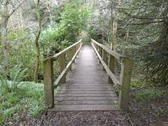 Bridge over the Marble Burn (cessna152towser) Tags: bridge footbridge jedburgh monteviot
