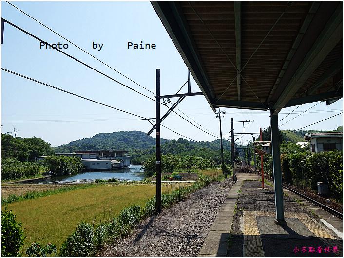 和歌山大池遊園-平池綠地公園 (5).JPG