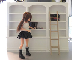 Paint it or not? (MurderWithMirrors) Tags: azone picconeemo library books miniaturebooks ladder mwm