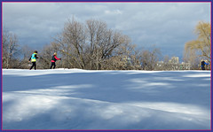 Cross Country Skiing (bigbrowneyez) Tags: winter crosscountryskiing sky snow clouds neve inverno cold fredo sunny shadows light nature natura excercise fun outdoor sole luce dof bright trees alberi fuore people male females gente reflectons bridge sports