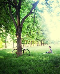 bike at Parco Michelotti (stegdino) Tags: light sun sunlight tree grass bike relax sitting thumbsup gamewinner 10100 cy2 challengeyouwinner thechallengefactory yourock2nd msh0714 storybookwinner showbizwinner pregamewinner ispywinner beginnersdailychallengewinner pinnacle20130627 20131208 pinnacle20131005 msh07148