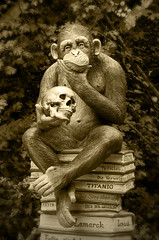 Dedicated to all intellectuals :) (JONE VASAITIS) Tags: portrait sculpture art monochrome animals sepia germany reading monkey book nikon shakespeare william german tragedy irony hamlet sarcasm sottrum artphotography tobeornottobe lamarck