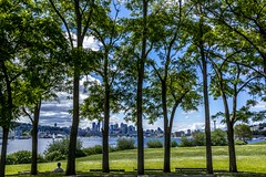 SeattleThroughTheTrees (Garden State of Mind) Tags: seattle park trees leaves skyline sailboat bench washington cityscape sony relaxing bluesky explore pacificnorthwest spaceneedle lakeunion parkbench gasworkspark greengrass seattlewa rx1 sonyrx1 taoolezeskiphotography