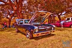 1971 Chevrolet Nova SS at the Emerald Coast Car Show 2013 (gswetsky) Tags: chevrolet nova coast antique ss emerald