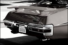 The Judge (greenthumb_38) Tags: california cruise hotrod costamesa lowrider carshow 70200mm ocfair ocfairgrounds canon40d crusinforacure jeffreybass cancercruise sept2013 cancercruise2013