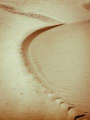 Marée basse (https://tinyurl.com/jsebouvi) Tags: sea mer beach nature mar aqua eau noiretblanc concours plage touquet maréebasse paysageinsolite natureinsolite ombrencourbe
