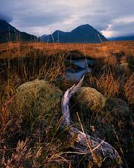 Sunrise (Boxfish Photography) Tags: scotland 4x5 velvia100f