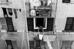 Daily duties (_Massimo_) Tags: blackandwhite bw italy italia liguria genoa genova laundry clothesline biancoenero bucato pannistesi panni massimostrazzeri ziomamo