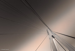 Fietsbrug Lanklaar-8-5.jpg (David Jonck) Tags: bridge architecture belgium brug flanders dilsenstokkem lanklaar d7000 tokina1116 fietsbruglanklaar