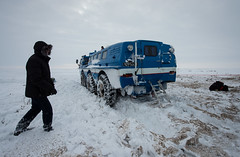 Expedition 38 Soyuz TMA-10M Landing (201403110026HQ) (NASA HQ PHOTO) Tags: nasa kazakhstan zhezkazgan billingalls roscosmosrussianfederalspaceagency expedition38 expedition38landing