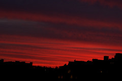 Fin d'hiver à Liège (mars 2014) (LiveFromLiege) Tags: liège sunset winter lastday skyline liege ciel coucher de soleil horizon coucherdesoleil luik lüttich liegi lieja wallonie belgique belgium リエージュ льеж
