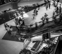 (D.Hou.) Tags: plaza longexposure bw hk hongkong blackwhite nikon escalator shoppingmall kowloon shoppingplaza kowloontong d3100