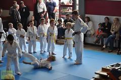 Judo-habay045
