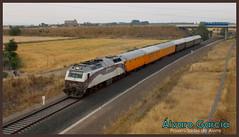 """Tren Azul """"Expreso Canfranc"""" (lvaro Garca Moreno) Tags: 333 renfe canfranc 3334 333407 azaft trenazul"""