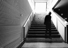 Step into .. (René Mollet) Tags: man street streetphotography silhouette station sbb streetart streetphotographiebw streip stairs downstairs renémollet monochromphotographie monchrom monochrom blackandwhite