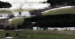 French landscape in spring (Paul-Emile Grisard) Tags: france alone landscape snow nature trees ngc nikon d5200 spring grass green water white moment view