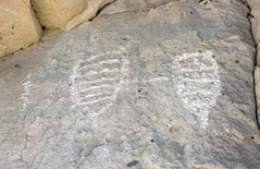 Petroglyphs / Emigrant Spring Site (Ron Wolf) Tags: anthropology archaeology deathvalleynationalpark emigrantcanyon nationalpark nativeamerican basket parallellines petroglyph rockart california