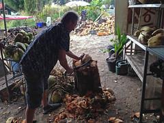 Big Island - Captain Cook - 2017 (tonopah06) Tags: cooksbounty fruitstand coconut husk machete captaincook kealakekuabay 2017 hawaii hi iphone image bigisland