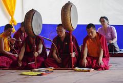 Musica espiritual (Nebelkuss) Tags: india asia bihar bodhgaia bodhgaya mahabodhi monje monk budista budismo buddhism buddhist musicos musician música music fujixt1 nikonaisprime nikon85f20