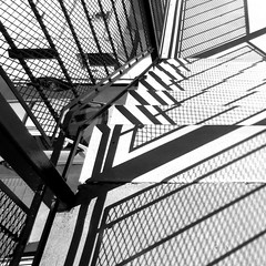 downward divertissement (Dom Guillochon) Tags: noiretblanc stairs stairwell parking lot vehicles sunlight urban city life time existence shadows roam wandering downward divertissement reality dream living multiverse steps floors ground earth architecture geometry