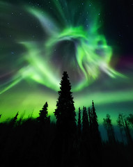 Dancing Spirits (yan08865) Tags: alaska auora night outdoor landscapes fairbanks northern lights winter yiannis pavlis sky extraordinarilyimpressive ngc