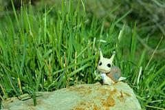 Spring! (air_dan) Tags: the mushroom peddler bjd snail pet