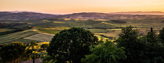 Landscape Waves (*Capture the Moment* (OFF till End June)) Tags: 2015 himmel italien italy landschaft leitzsummiluxm1450 panorama panoramablick pienza sky sommer sonya7m2 sonya7mii sonya7ii sonyilce7m2 sunset toskana tuscany