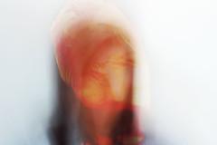 Hidden Identity (G.W Photography) Tags: portrait people selfportrait colour face contrast photoshop photography weird photo doubleexposure overlay headshot hidden identity disguise unusual hiddenidentity