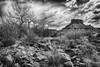 Homage to the Master (Jeff Clow) Tags: blackandwhite landscape bravo timeless moabutah professorvalley homagetoanseladams anseladamstribute theriverroad inthestyleofanseladams tpslandscape