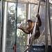 orangutan - toronto zoo - 14