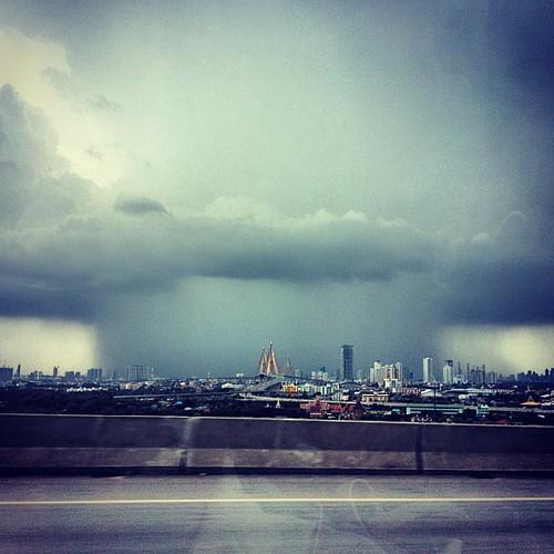 #rain#storm#swallow