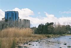 Canberra (MoreFunkThanYou) Tags: city urban streetart green film skyline 35mm garden graffiti nikon cityscape graf suburbia australia 35mmfilm canberra 35 streetscape urbanlandscape 35mmphotography sunflare filmphotography nikonf5 canberracity urbancanberra morefunkthanyou