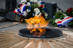 Tomb of the Unknown Soldier - Eternal Flame (Guilherme Bacellar Moralez) Tags: paris french fire europa europe frana viagem