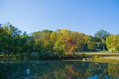 The little pond (aivzdogz) Tags: park new autumn trees fall water pond nj jersey ridgewood habernickel