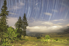 Startrail over the Rice Paddies (DEtravelphoto) Tags: china travel vacation holiday rice paddy fields paddies yuanyang