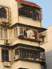 cages or balconies? (francesca.clemente) Tags: china shanghai ningbo hangzhou threepondsmirroringthemoon currency foodmarket spongebob wedding fish exercise bike lake traffic westlake dreamboat francescaclemente clementefrancesca cagliari leuven gatti viaggi francesca clemente burrito foodtruck food electronics taco travel trip green europe asia america holiday art architecture nature city landscape sea italy sky cat cats