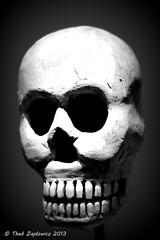 Folk art skull