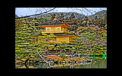 kinkakuji (karakutaia) Tags: sun tree love nature japan paper temple japanese tokyo heart superb card e simply sogno rockpaper afotando flickraward flickrglobal elementsorganizer allbeautifulshotsandmanymoreilovenature flowerstampblackandwhite transeguzkilorestreetarturbanagreatshotthisisexcellentcontestmovementricohgxrserendipitygroupbluenatureicapture flickraward5jtra realtabstract