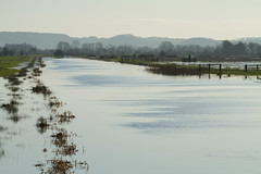 Somerset Levels Flooding (Mukumbura) Tags: uk trees england weather river flooding underwater flood britain farm tranquility somerset farmland hills fields climate tranquilscene floodwater greylake somersetlevels peacefulscene kingssedgemoordrain