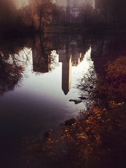 iPhoneography ({limited dof}) Tags: nyc newyorkcity reflection texture centralpark iphoneography iphone5s